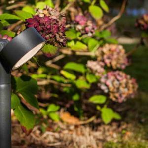 Светильник внешний LUTEC Trumpet 7226101118 (6261A-850 gr)