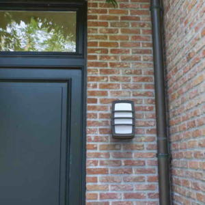 Светильник внешний LUTEC Seine 6338101118 (3381 gr)