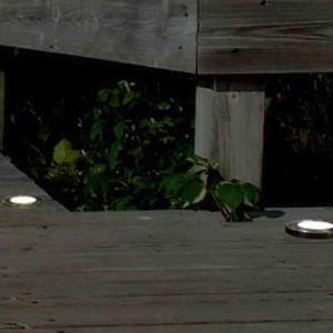 Светильник внешний LUTEC Hony Deck 6904801118 (9048)