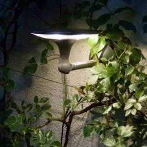 Светильник внешний LUTEC Kiwa 6903901501 (ST9039)